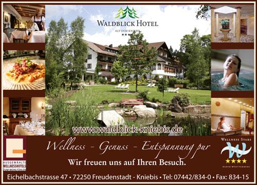 freizeitplaner-schwarzwald-waldblick-kniebis