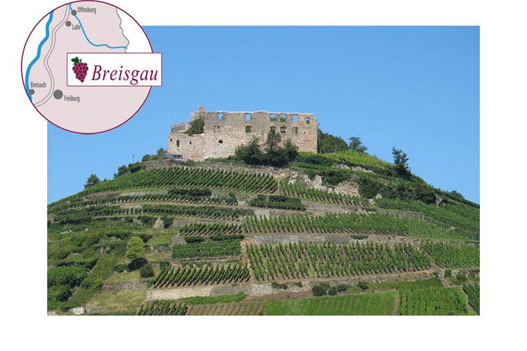 Foto Burg Staufen