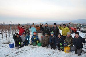 Gruppenfoto der winterlichen Eisweinlese des Weinguts Hunn