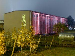 Das neue Gebäude der Winzergenossenschaft Bötzingen (© WG Bötzingen)