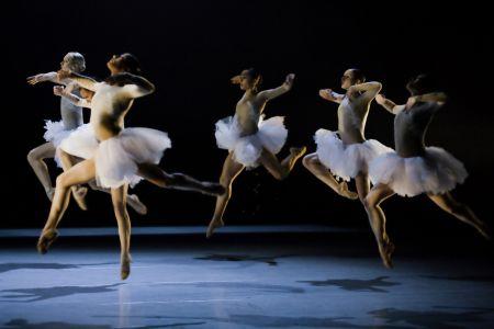 Das Theater Basel in der Spielzeit 2009/10
