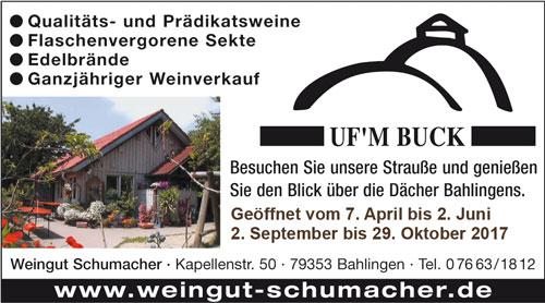 kulturjoker_weingut_schumacher_bahlingen