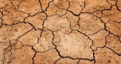Klimakatastrophe: was ändert sich für mich? Die Uni Freiburg klärt auf!