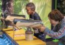 Le Vaisseau bietet eine interaktive Wissensrallye mitten im Dschungel!
